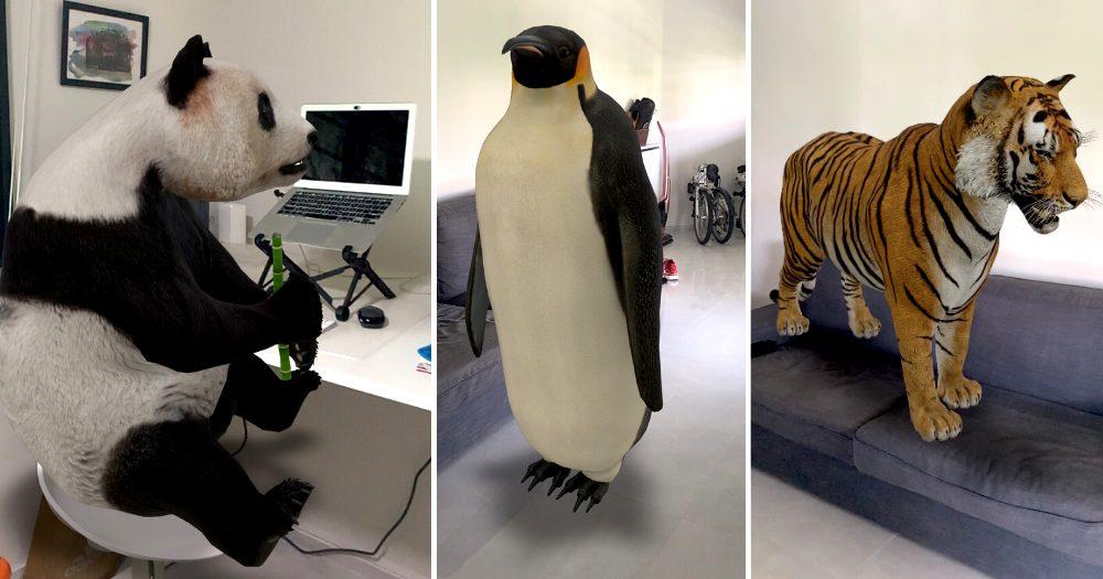 حیوانات سه بعدی
