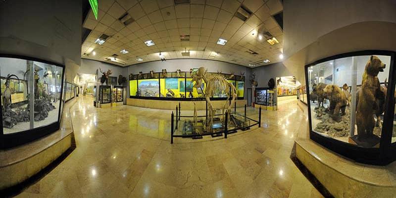 موزه پردیسان